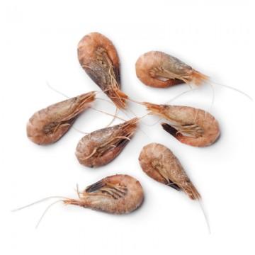 Crevettes grises de...
